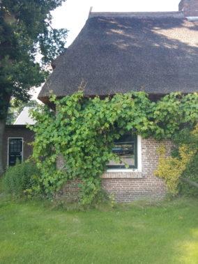 Een stukje van de woning in Oosterhesselen