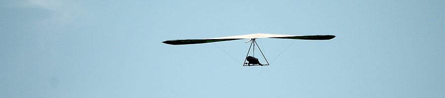 Silhouet van vliegende Titanium CX