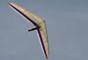 Deltavlieger Seedwings Speyder Robbert
